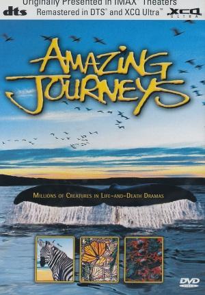 Amazing Journeys 1483x2133