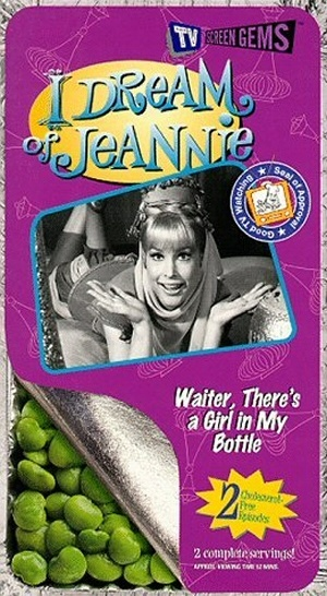 I Dream of Jeannie 300x546