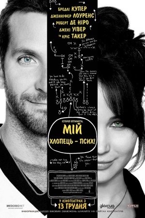 Silver Linings Playbook 800x1200