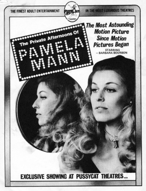The Private Afternoons of Pamela Mann Poster