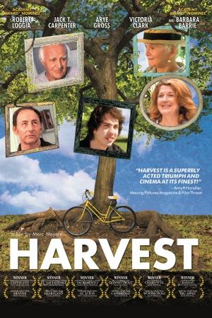 Harvest 800x1200