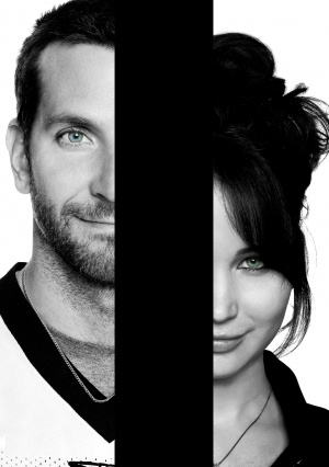 Silver Linings Playbook 3523x5000
