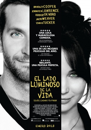 Silver Linings Playbook 3500x5000
