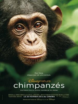 Chimpanzee 2835x3780