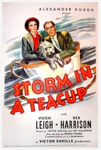 Sturm im Wasserglas poster