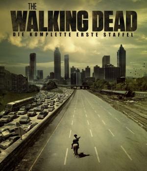 The Walking Dead 1520x1760