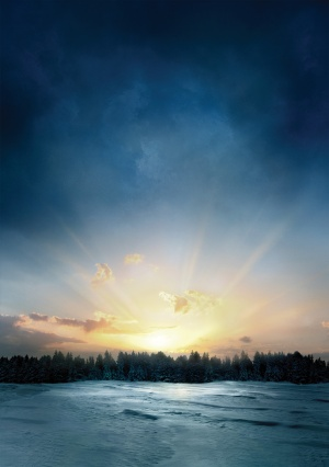 The Twilight Saga: Breaking Dawn - Part 2 3525x5000