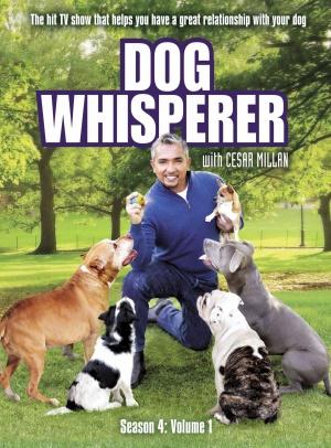 Dog Whisperer with Cesar Millan 1643x2222