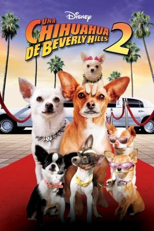 Beverly Hills Chihuahua 2 2000x3000
