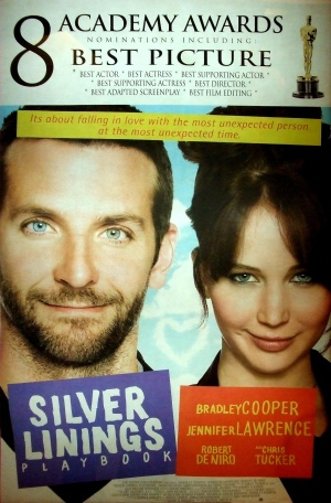 Silver Linings Playbook 1530x2326