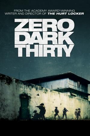 Zero Dark Thirty 1400x2100
