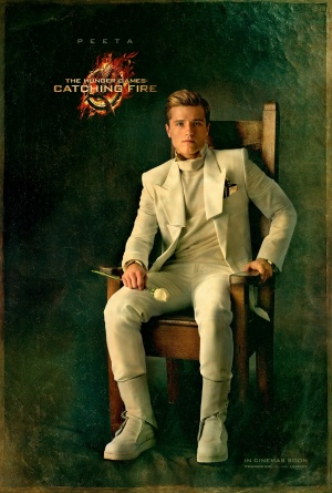 The Hunger Games: Catching Fire 1382x2048