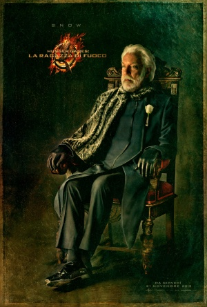 The Hunger Games: Catching Fire 1280x1898