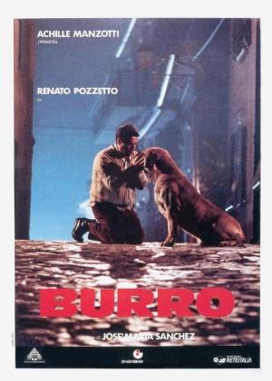 Burro 700x982