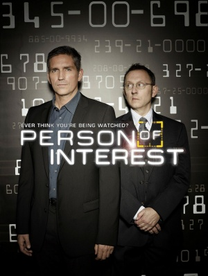 Person of Interest 1202x1600