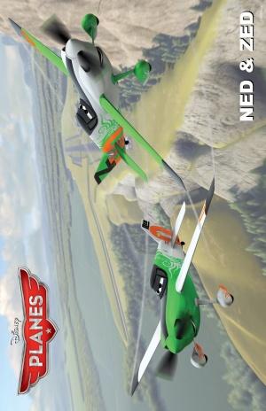 Planes 3235x5000