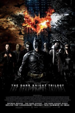Batman Begins 1000x1500