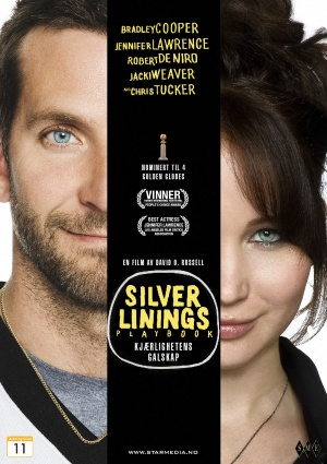 Silver Linings Playbook 1018x1441
