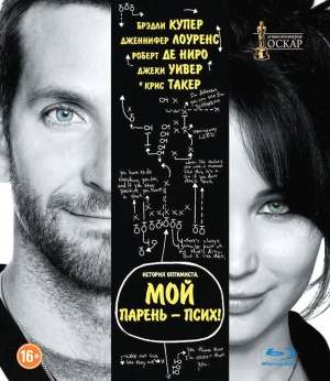 Silver Linings Playbook 876x1011