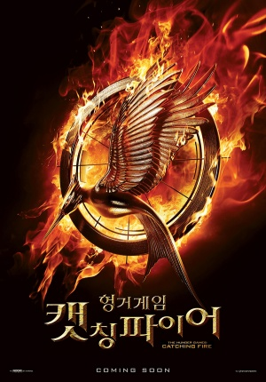 The Hunger Games: Catching Fire 900x1289