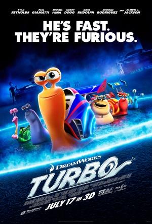 Turbo 3376x5000