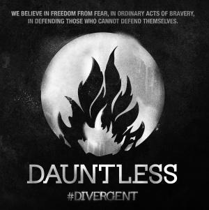 Divergent 4050x4060