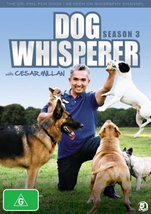 Dog Whisperer with Cesar Millan 1527x2164