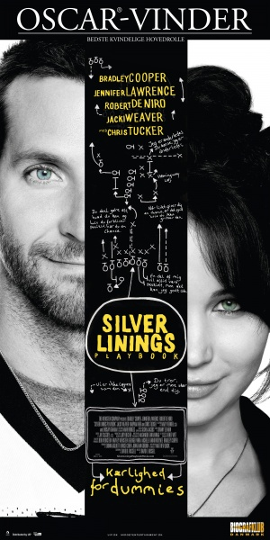Silver Linings Playbook 2500x5000