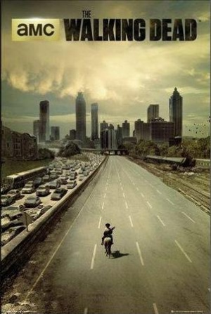 The Walking Dead 302x450