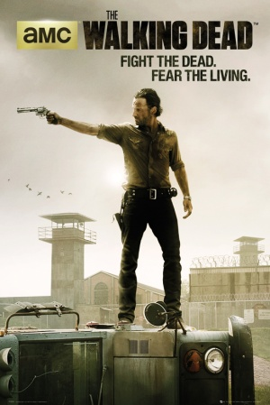 The Walking Dead 552x827