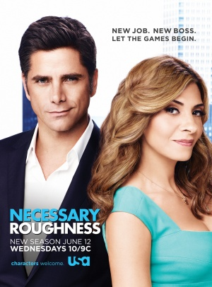 Necessary Roughness 2325x3150