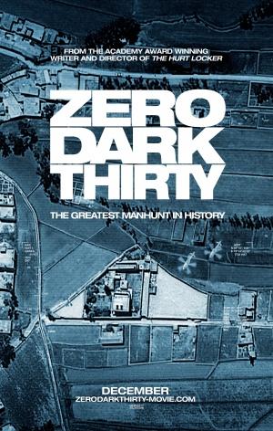Zero Dark Thirty 3175x5000
