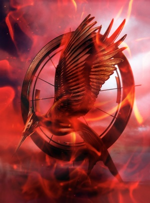 The Hunger Games: Catching Fire 3708x5000