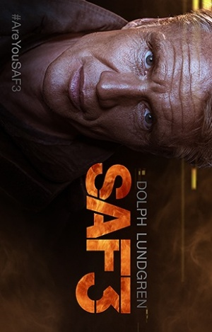 SAF3 309x483