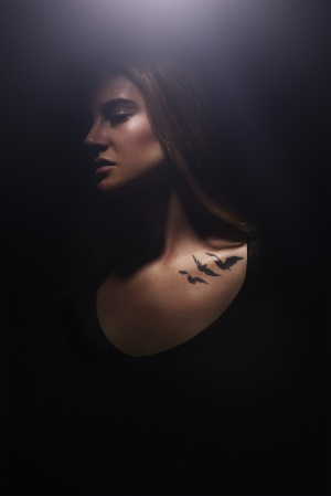 Divergent 3344x5000