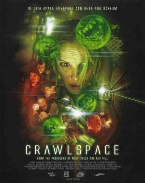Crawlspace 3966x5000