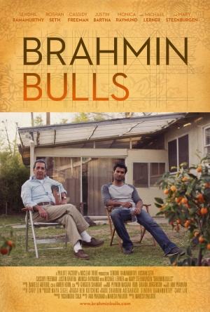 Brahmin Bulls 990x1467