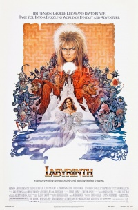 Die Reise ins Labyrinth poster