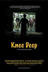 Knee Deep poster