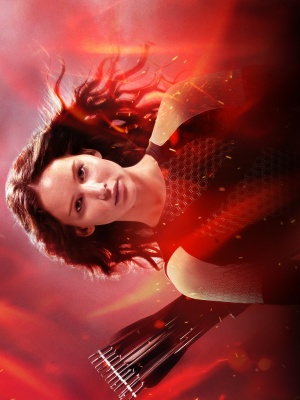 The Hunger Games: Catching Fire 768x1024