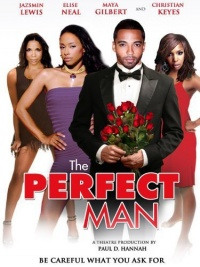 The Perfect Man poster