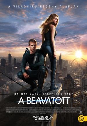 Divergent 800x1148