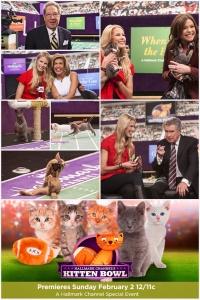 Kitten Bowl poster