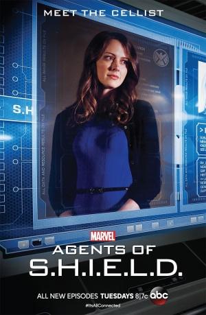 Agents of S.H.I.E.L.D. 800x1224