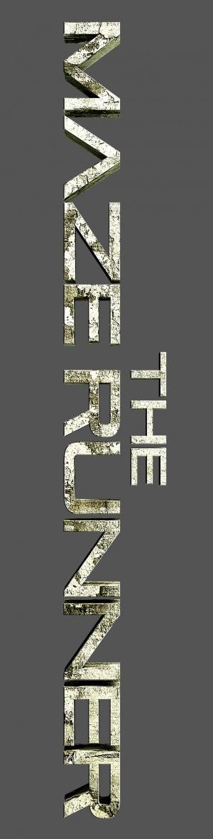 The Maze Runner 1015x4000
