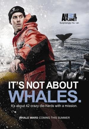 Whale Wars 400x577