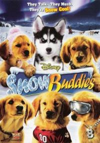 Snow Buddies - Abenteuer in Alaska poster