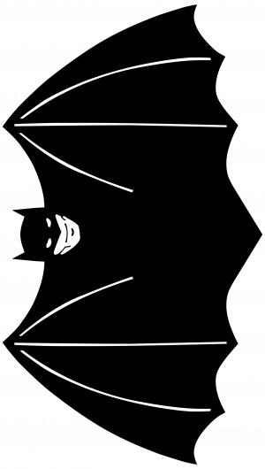 Batman 2662x4700