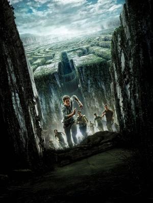 The Maze Runner 3774x5000