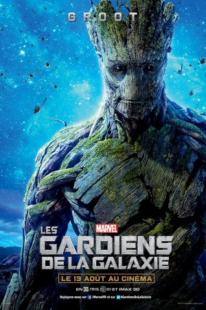 Guardians of the Galaxy 800x1200
